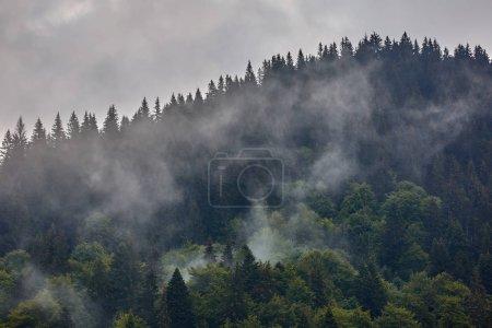 Photo pour Beau paysage avec les montagnes de Parang en Roumanie dans un jour de pluie brumeux - image libre de droit