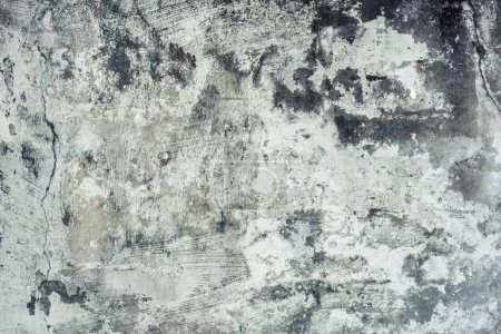 Photo for Mildewed wall background, grunge texture of dirty cement wall - Royalty Free Image