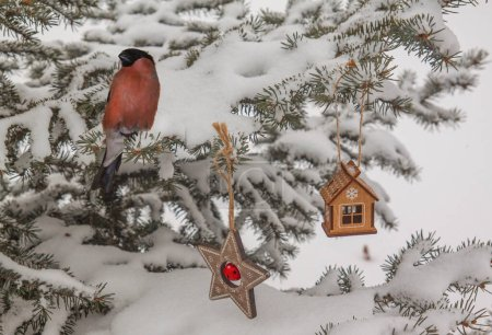 Snow-covered  spruce with bullfinch and retro Chri...