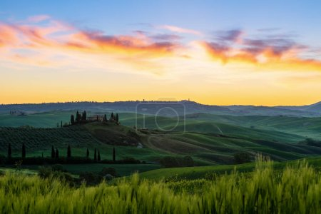 Photo pour Tuscany landscape in the sunrise and  rolling green hills fields . Italy - image libre de droit