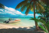 Palm trees, tropical beach, caribbean sea and speed boat. Saona island, Dominican Republic