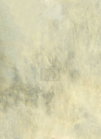 Photo for Beige leather drum skin background texture. Closeup view - Royalty Free Image