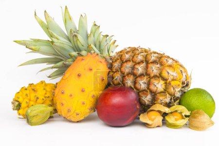 Photo pour Fruit exotique sur fond blanc - image libre de droit