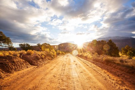 Photo for Road in the prairie country - Royalty Free Image