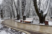 Winter landscape with falling snowflakes - bench covered with snow among frosty park winter trees and street lanterns. Winter snowy landscape view