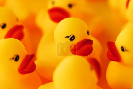 Group of rubber ducks chatting. Conceptual image of young ducklings talking to each other or gossiping for social media and networks related themes.