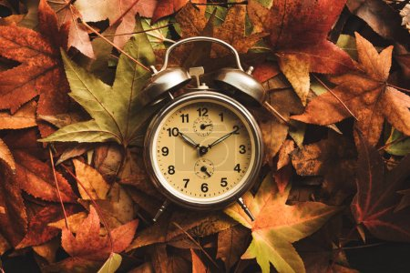 Photo for Autumn season time, retro vintage alarm clock in dry fall leaves - daylight saving time concept - Royalty Free Image