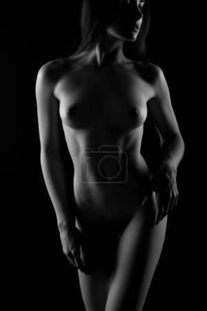 Nude sexy body of young female person, nu art. Naked woman, black and white silhouette of attractive girl, erotic seductive lady