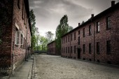Barracks on territory of German concentration camp Auschwitz II, Birkenau, Poland. Museum of victims of the nazi genocide of the Jewish people