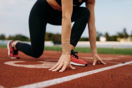 Photo pour Coureuse en tenue de sport sur la ligne de départ, s'entraînant sur le stade. Femme faisant de l'exercice d'étirement avant de courir sur l'arène sportive - image libre de droit