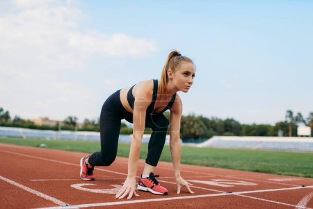 Photo for Female runner in sportswear on start line, training on stadium. Woman doing stretching exercise before running on outdoor arena - Royalty Free Image
