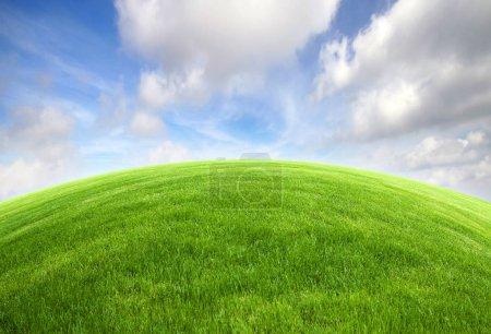Photo pour Champ d'herbe verte avec ciel bleu vif - image libre de droit