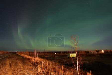Photo for Northern lights (Aurora Borealis) over the road and the dry tundra - Royalty Free Image