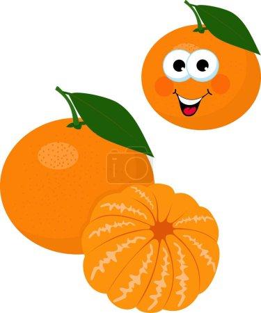 Photo pour Mandarines, mandarine, clémentine avec feuilles isolées sur fond blanc. Drôle de personnage de dessin animé. Illustration matricielle sur fond blanc - image libre de droit