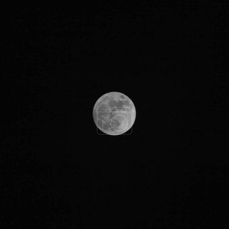 Photo for Black and white photo of the Moon - Royalty Free Image
