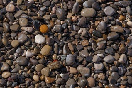 Photo pour Abstrait naturel: galets de pierres sur la plage à Nice - image libre de droit
