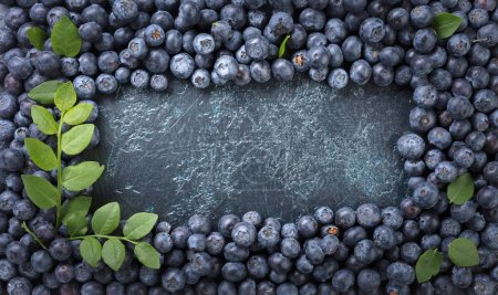 Ripe and juicy fresh picked blueberries closeup. B...