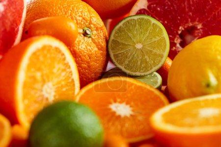 Photo pour Gros plan sur les agrumes. Morceaux de citron, citron vert, mandarine, pamplemousse rose et orange. Concentration sélective . - image libre de droit
