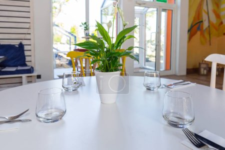 Dining table setting with decorations