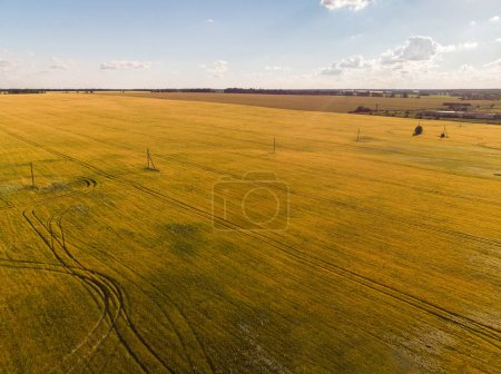 view of agricultural fields from the heights in Russia