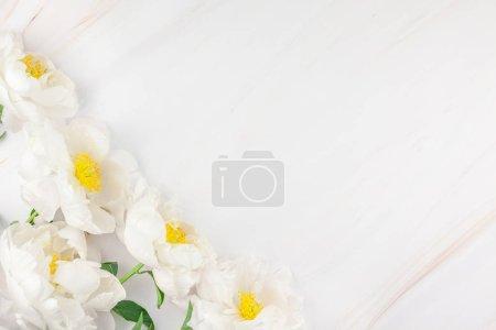 Photo pour Belle floraison de fleurs de pivoine blanche sur fond de marbre avec espace copie style minimal, modèle de carte postale, lettrage, texte ou votre conception. Faire-part de mariage et célébration salutation concept - image libre de droit