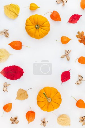Photo for Creative Top view flat lay autumn composition. Pumpkins dried orange flowers leaves background copy space. Template frame fall harvest thanksgiving halloween anniversary invitation cards - Royalty Free Image