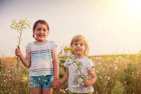 Photo pour Deux petites sœurs marchant sur la prairie d'été - image libre de droit