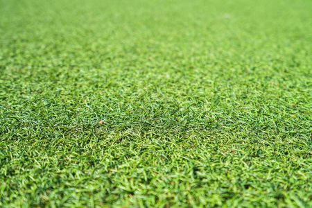 Photo for Background of green artificial grass - Royalty Free Image