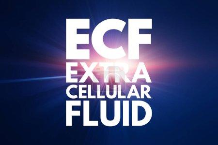 ECF - Extrazelluläre Flüssigkeit Akronym, medizinisches Konzept Hintergrund