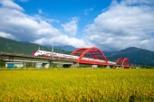 train on the field in yuli, hualien, taiwan