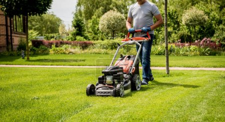 Photo for Gardener mowing the lawn. Landscape design. Gardening - Royalty Free Image