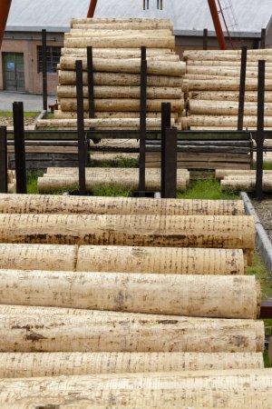 Photo pour Industrie du bois en Alpes, Italie - image libre de droit