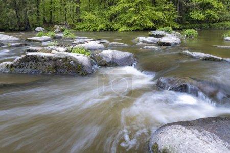 Photo pour Rivière Sazava près de Smrcna, République tchèque - image libre de droit