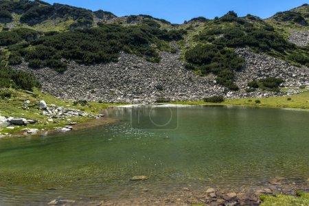 Photo for Amazing Landscape with Prevalski lakes near Mozgovishka pass, Pirin Mountain, Bulgaria - Royalty Free Image