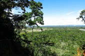 Panoramic of Amazon forest, Bolivia
