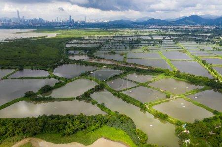 Top view Fish hatchery ponds in Hong Kong