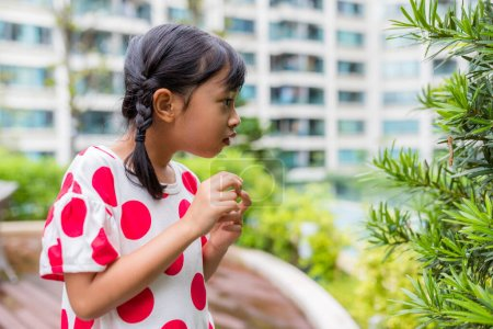 Photo for Little girl look at green plant - Royalty Free Image