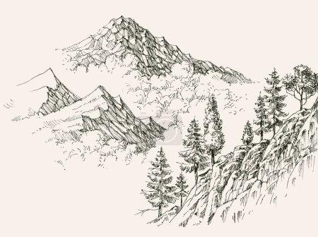 Illustration pour Croquis alpin, chaînes de montagnes et végétation résineuse - image libre de droit