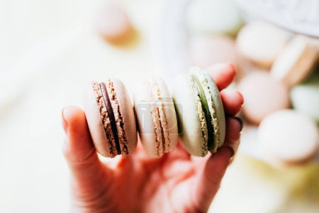 Photo for Homemade French Macaroons on the Plate, Pistachio, Coffee and Vanilla Macaroons, Womans Hand is taking Delicious Cookies Macaroons, Beautiful Wallpaper - Royalty Free Image
