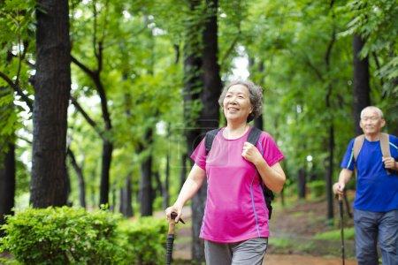 Photo pour Asiatique senior couple randonnée sur la forêt parc - image libre de droit