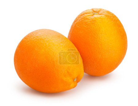 Photo pour Oranges mûres fraîches isolés sur fond blanc - image libre de droit