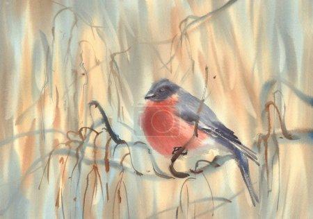 little bird bullfinch on the branch watercolor background