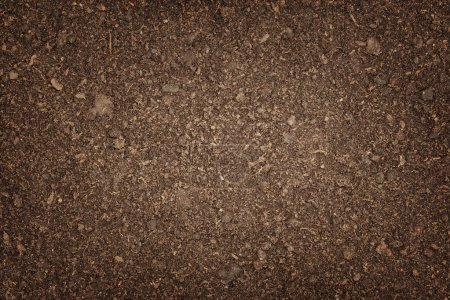 Photo for Natural soil background with dark borders and emty space - Royalty Free Image