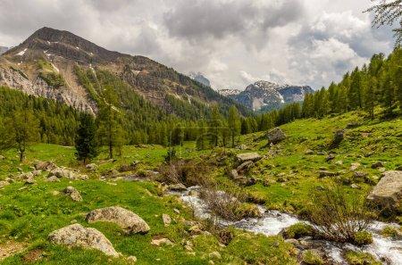 Photo pour Vallée verte alpine au printemps. Paysage montagneux avec prairie herbeuse et ciel nuageux. - image libre de droit