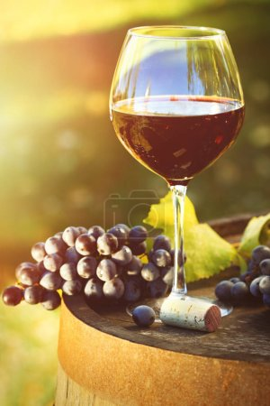 Photo for Closeup of glasse of red wine and grapes on barrel - Royalty Free Image