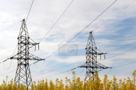 Photo for Two electric poles of high-voltage lines installed in a field with flowering rapeseed. A blue sky with clouds, a picture of the landscape during sunset. - Royalty Free Image