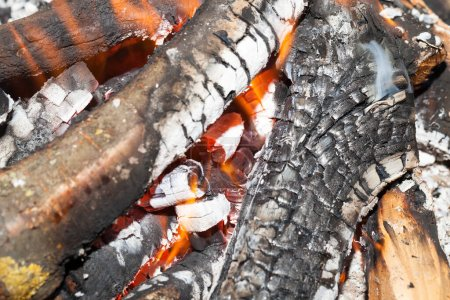 Photo for Burning firewood, branches of birch wood in the fire. There is a flame of fire. Photographed close-up. - Royalty Free Image