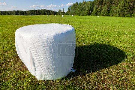 Photo pour Cheminée en plastique avec gazon emballé pour nourrir les animaux en hiver. Paysage photo avec ciel bleu - image libre de droit