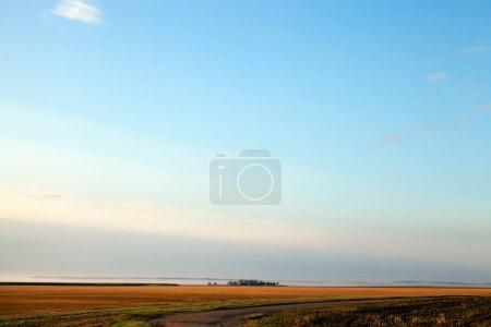 Photo pour Paysage estival avec brouillard, ciel et champ agricole. Au loin, une petite maison a été construite dans le champ et il y a des poteaux électriques dans le brouillard. Au premier plan se trouve une bande d'une route rurale - image libre de droit