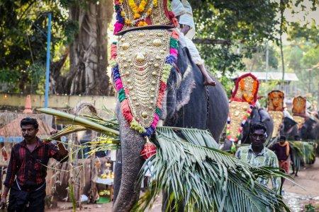 Photo pour Kottayam, Kerala, INDE - 25 JANVIER 2012 : les Indiens conduisent des éléphants décorés marchant par un village indien lors d'un festival annuel le 25 janvier à Kottayam - image libre de droit